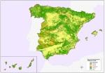 ESPAÑA MAPA FORESTAL