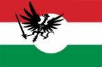 HUNGRIA REVOLUCION CONSERVADORA