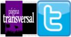 Página transversal en Twitter